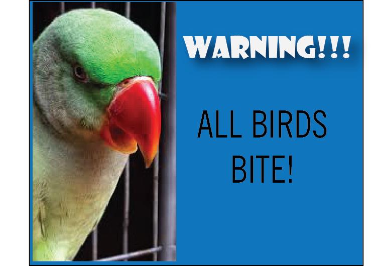 Birds Bite! (Warning -Graphic Content)